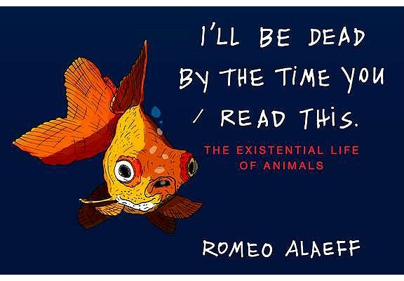 I'll Be Dead by the Time You Read This By Alaeff, Romeo